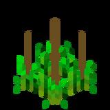 Стадия роста хмеля 3 (IndustrialCraft 2).png