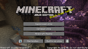 Java Edition 21w20a.png