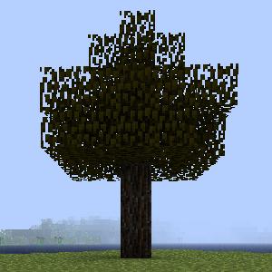 Дерево ели.png