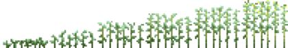 Джут (фазы роста) (TerraFirmaCraft).png