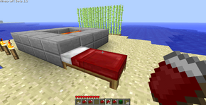 Bed in Overworld.png