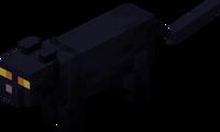 Чёрная кошка.png
