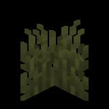 Болотная трава.png