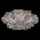 Мёртвый мозговой веерный коралл.png