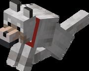Сидящий волк (приручённый).png