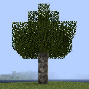 Дерево платана.png