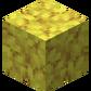 Роговый коралловый блок.png
