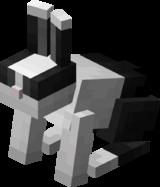 Тост кролик.png