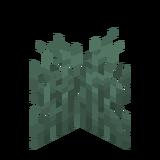 Трава снежной тайги.png
