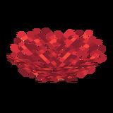 Огненный веерный коралл.png