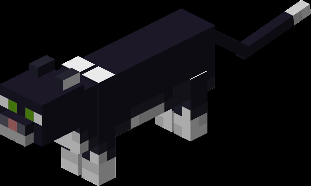 Чёрно-белая кошка.png