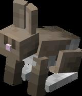 Соль и перец кролик.png