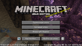 Java Edition 1.17-pre4.png