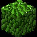 Листва гевеи (MineFactory Reloaded).png