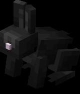 Чёрный кролик.png