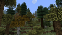Boreal Forest.png