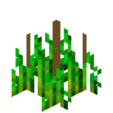 Стадия роста хмеля 4 (IndustrialCraft 2).png
