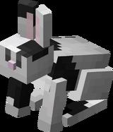 ЧБ кролик.png