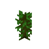 Саженец тропического дерева JE2 BE2.png