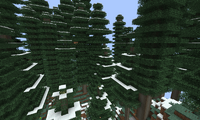 Ёлки в снегу (ExtrabiomesXL).png