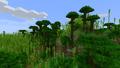 Холмистые бамбуковые джунгли.png