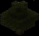 Каштан (TerraFirmaCraft).png