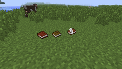 Book and quill 3.png
