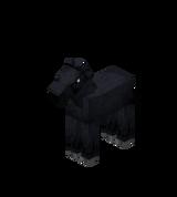 Жеребёнок черный.png