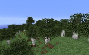 Березовий ліс.png
