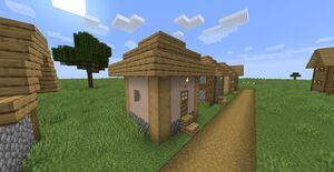 Villhousesmall1-1.jpg