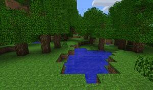 Сезонний ліс.jpg