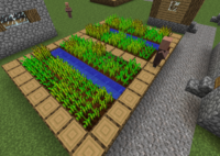 Ферма велика.png