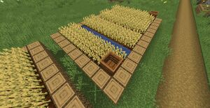 Villworkfarm2.jpg