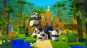 Cats & Pandas.jpg