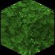 Dark Oak Leaves BE2.png