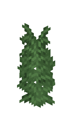 Large Fern.png
