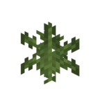 Plains Fern.png