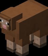 Brown Sheep BE5.png