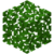 Acacia Leaves BE2.png