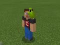 Green Parrot on Developer Steve.png