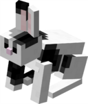 Black & White Rabbit JE2 BE1.png