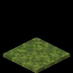 Moss Carpet JE1 BE1.png