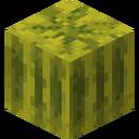 Melon JE1 BE1.png