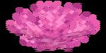 Brain Coral Fan JE1 BE2.png