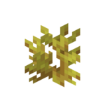 Horn Coral JE1 BE1.png