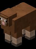 Brown Sheep BE4.png