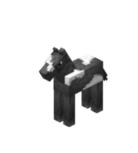 Baby Gray Horse with White Field.png