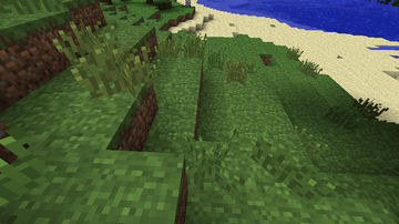 Tall grass in Beta 1.6 Test Build 3.png