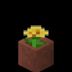Potted Dandelion JE2 BE2.png