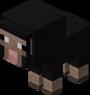 Baby Black Sheep BE3.png